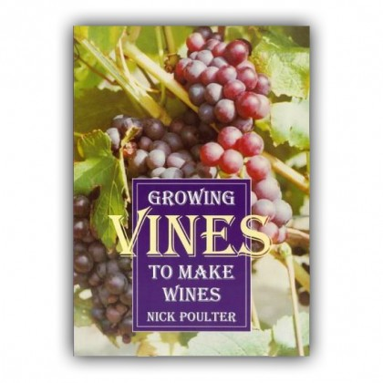 Growing Vines To Make Wines from dowricks.com